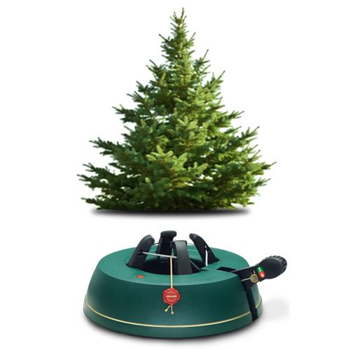 Albero Di Natale 75 Cm.Albero B1 50 75cm Comfort S Albero Di Natale Vero Alto Adige Val Venosta